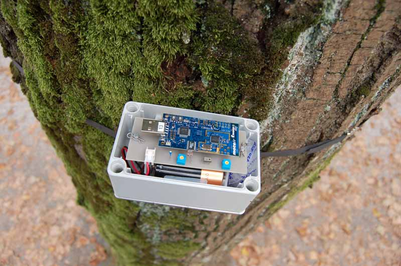 sensor-with-moss.jpg