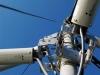 Antenna tree.jpg