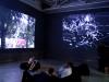 exhibiton-view.jpg